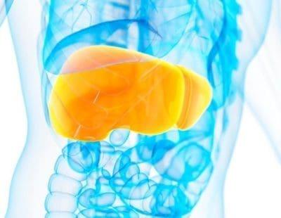 Put your liver through enough liver health