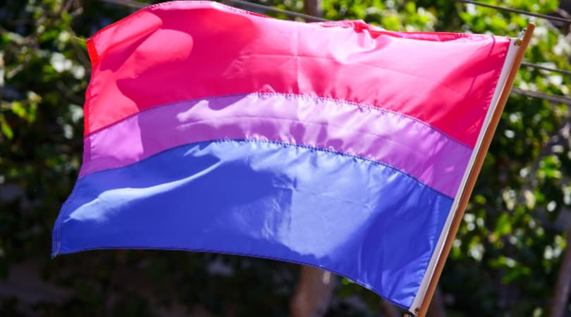 Picture of a Bi Pride Flag by Peter Salanki